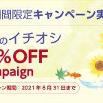 8月のイチオシ10%OFFキャンペーン